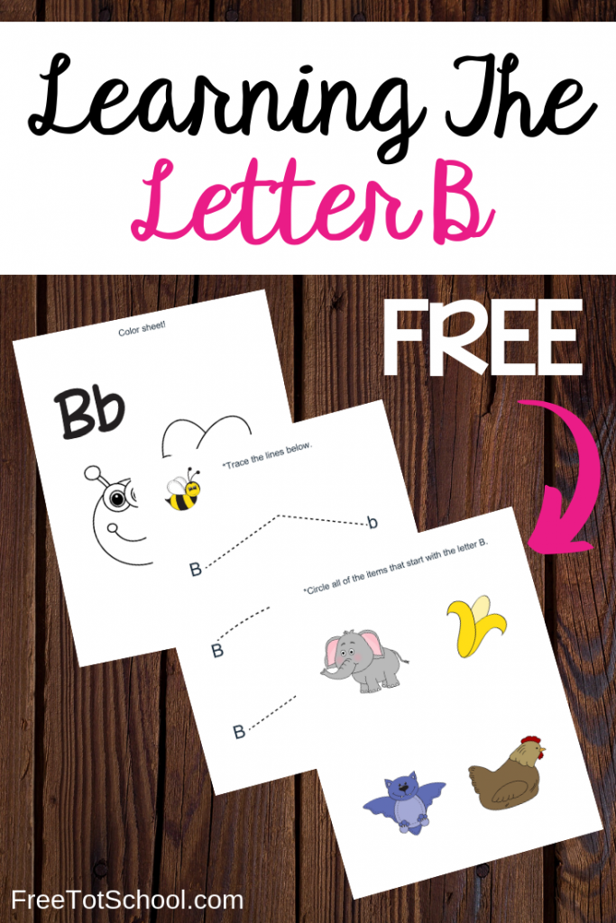 Help your preschooler learn the letter B with this fun lesson plan and free worksheets. Great for letter of the week activities.